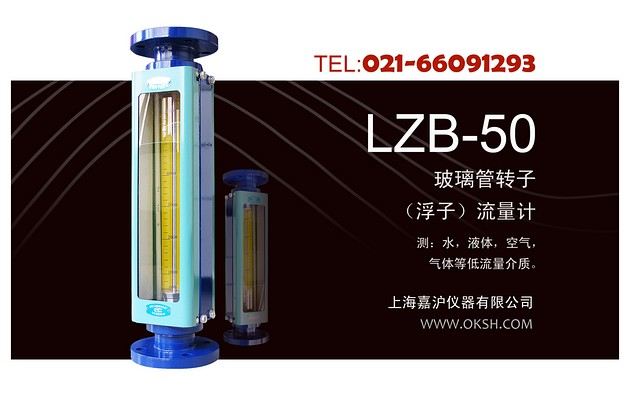 ZB-50大口径玻璃转子浮子流量计-上海嘉沪